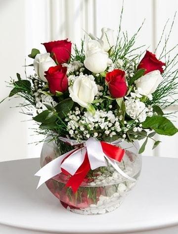 Aşk Küresi  5 beyaz 5 kırmızı gül fanusta  Gaziantep çiçek yolla , çiçek gönder , çiçekçi
