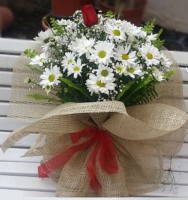 Papatya 1 adet kırmızı gül buketi  Gaziantep İnternetten çiçek siparişi