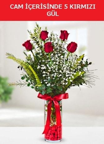 Cam içerisinde 5 adet kırmızı gül  Gaziantep online çiçekçi , çiçek siparişi