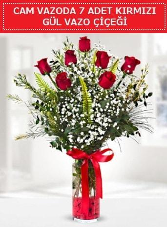 Cam vazoda 7 adet kırmızı gül çiçeği  Gaziantep 14 şubat sevgililer günü çiçek