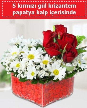 mika kalp içerisinde 5 kırmızı gül papatya  Gaziantep hediye sevgilime hediye çiçek