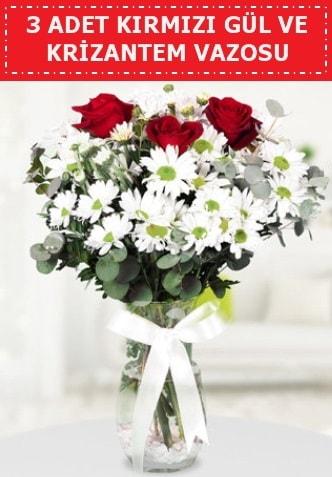 3 kırmızı gül ve camda krizantem çiçekleri  Gaziantep hediye sevgilime hediye çiçek