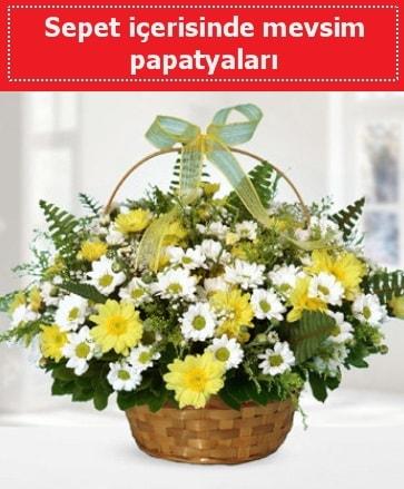 Sepet içerisinde mevsim papatyaları  Gaziantep kaliteli taze ve ucuz çiçekler