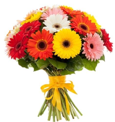 Gerbera demeti buketi  Gaziantep çiçek servisi , çiçekçi adresleri
